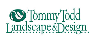 Tommy Todd Landscape