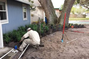 front-yard-Priser-Project-Irrigation-Landscaping
