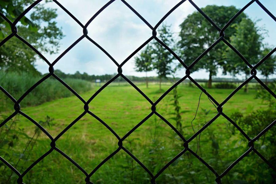 Tampa fence installation